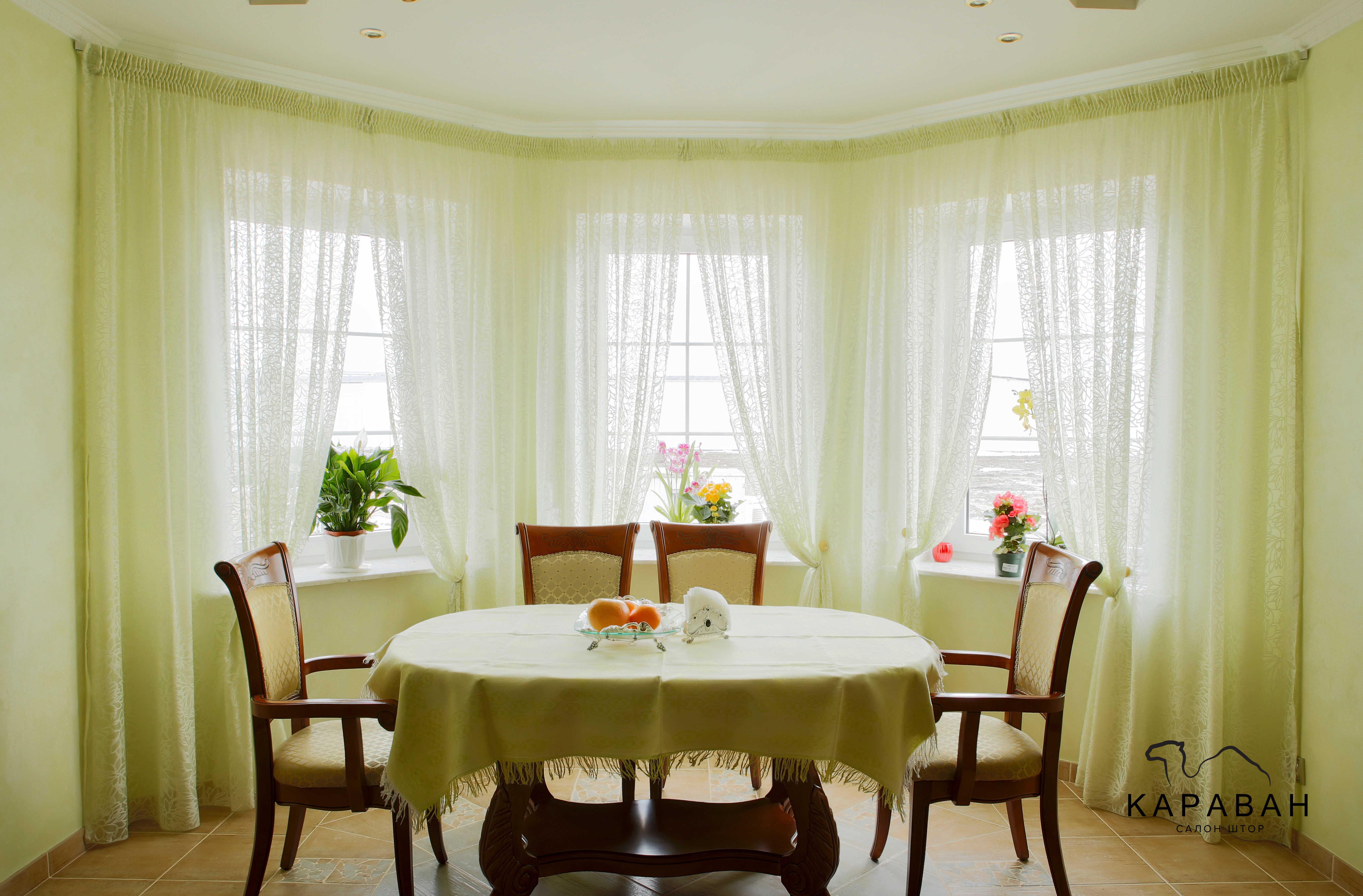 продаже, шторы для эркерного кухонного окна фото многощетинковых червей каждом